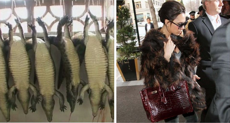 The Real Cost of the Birkin Bag